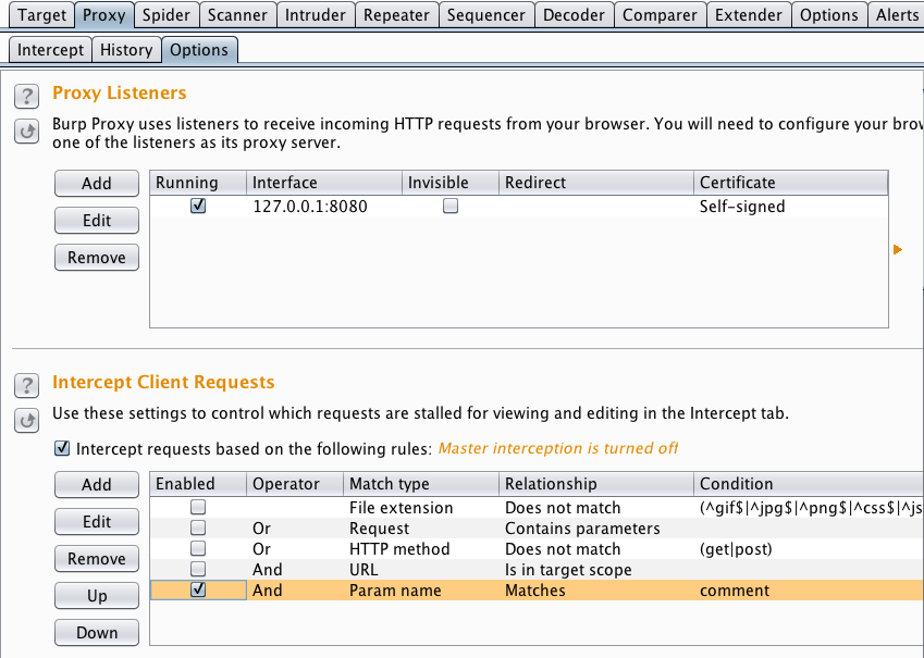 Blog Archive » Burp suite tutorial / tip: using intercept to